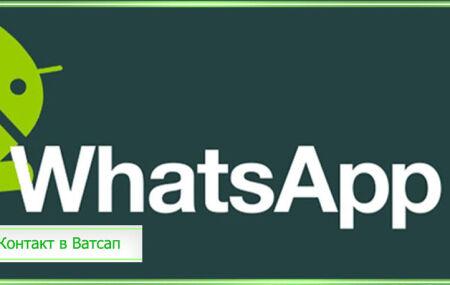 Как добавить в Ватсап контакт из контактов телефона: через телефон и компьютер